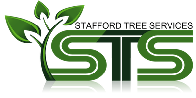 Stafford Tree Services  logo